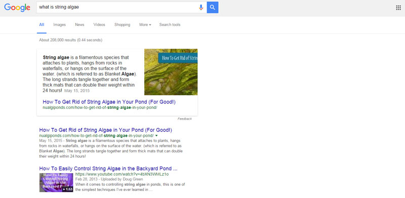 google-answer-box-example-optimization